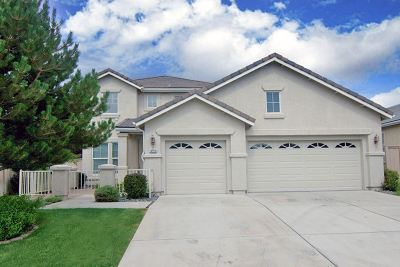 Reno Single Family Home New: 10710 Clear Vista Dr