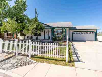 Sparks NV Single Family Home New: $329,900