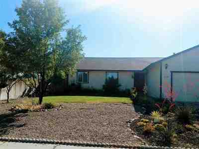 Gardnerville Single Family Home For Sale: 618 Long Valley