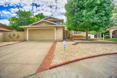 Reno Single Family Home New: 4342 Mexicali Ct