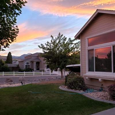Reno Single Family Home For Sale: 681 Silver Falls Court