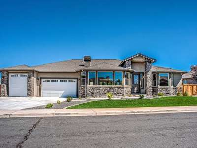 Gardnerville Single Family Home For Sale: 1131 Rocky Terrace Dr