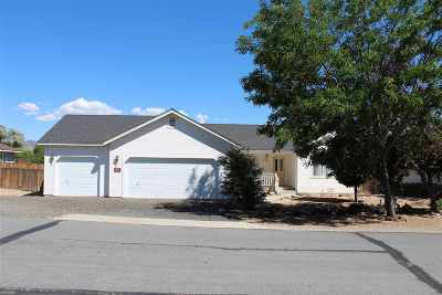Carson City Single Family Home For Sale: 2247 Gregg St.