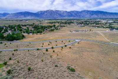 Gardnerville Residential Lots & Land For Sale: 1107 Cortez