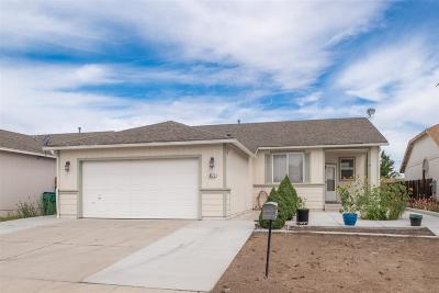 Reno Single Family Home New: 8171 Big River Dr