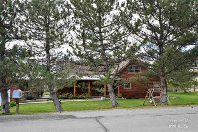Reno Single Family Home New: 275 Courtney Ln