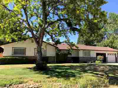 Reno Single Family Home For Sale: 135 Drew Drive