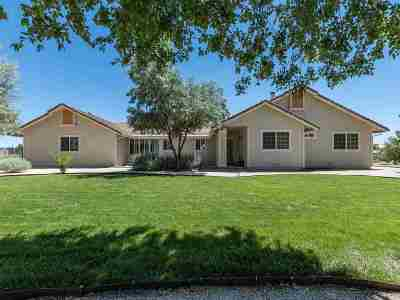 Reno Single Family Home Active/Pending-Loan: 10570 Trailmaster Drive