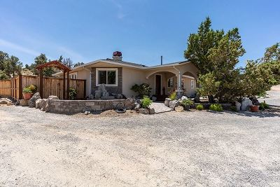 Reno Single Family Home For Sale: 1180 New Pass Road