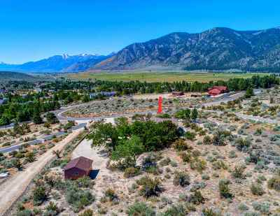 Carson City Single Family Home For Sale: 3543 Mont Blanc