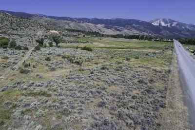 Reno Residential Lots & Land New: 7565 S S Virginia Street