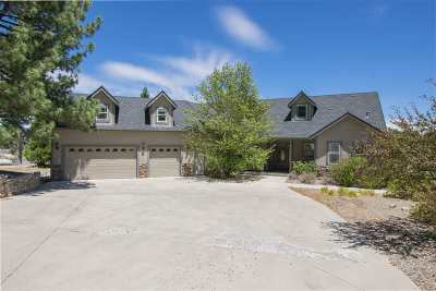 Gardnerville Single Family Home For Sale: 193 Taylor Creek Road