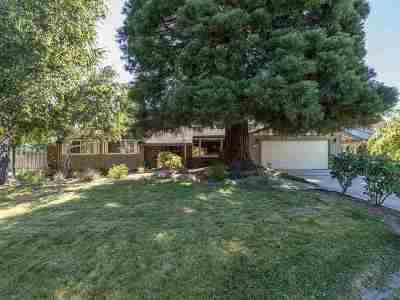 Reno Single Family Home New: 1710 S Marsh Avenue