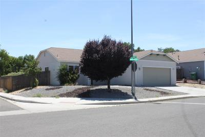 Fernley Single Family Home New: 1475 Green River Lane