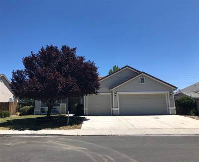 Fernley Single Family Home New: 979 Cold Water Drive