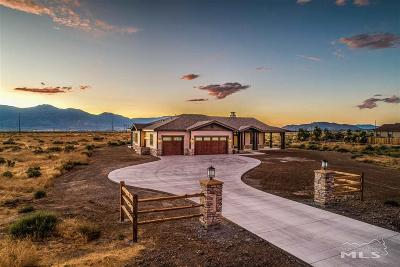 Minden Single Family Home New: 1840 Painted Desert Drive