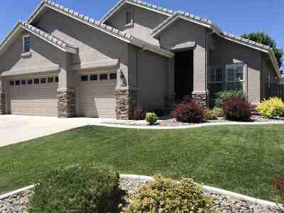 Reno Single Family Home New: 10047 Cascade Falls Dr