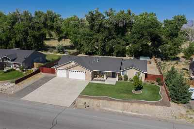 Fernley Single Family Home New: 1020 Red Rock Rd