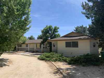Carson City Single Family Home New: 19 Christy Court