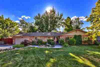 Reno Single Family Home New: 2445 Tamarisk Drive