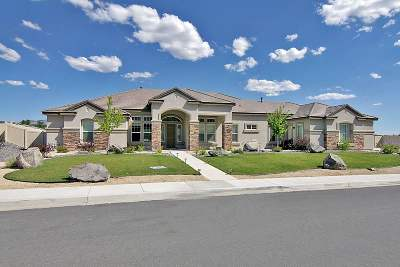 Sparks Single Family Home Active/Pending-Loan: 11980 Topaz Creek