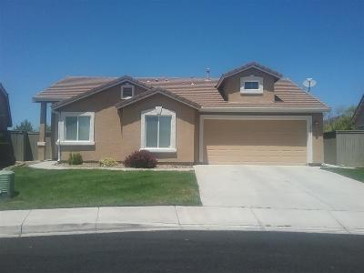 Reno, Sparks, Carson City, Gardnerville Single Family Home New: 1735 Canyon Shadow Cir