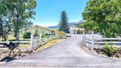 Washoe Valley NV Commercial New: $469,000
