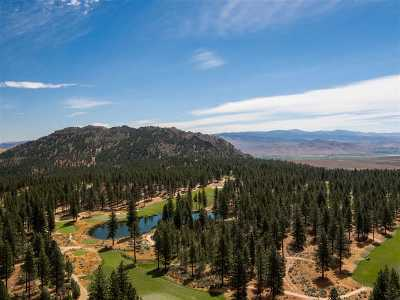 Carson City Residential Lots & Land Active/Pending-Call: 130 Chamberlain Court