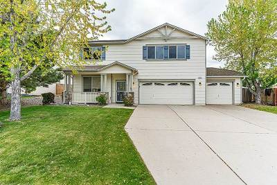 Reno Single Family Home New: 461 Golden Vista