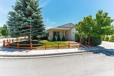Reno, Sparks, Carson City, Gardnerville Single Family Home New: 17748 Fiesta