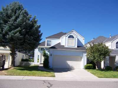 Carson City Single Family Home New: 1031 Mica Dr.