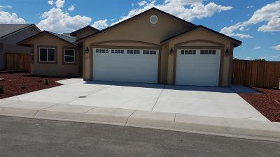 Fernley Single Family Home For Sale: 1127 Dixie