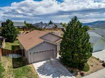 Carson City Single Family Home New: 994 Hilltop Drive