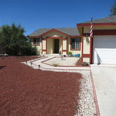 Fernley Single Family Home For Sale: 613 Winter Pl