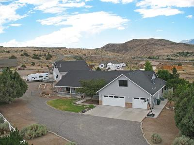 Gardnerville Single Family Home For Sale: 1913 Wiseman