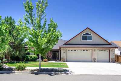 Gardnerville Single Family Home For Sale: 1364 Bryan Lane