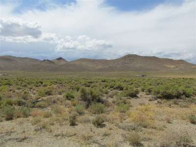 Yerington NV Residential Lots & Land For Sale: $35,000