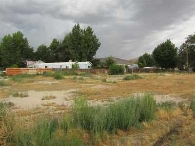 Yerington NV Residential Lots & Land For Sale: $40,000