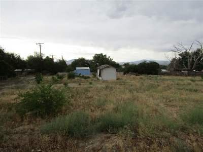 Yerington NV Residential Lots & Land For Sale: $50,000