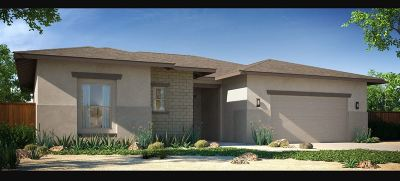 Fernley Single Family Home For Sale: 142 Snowy Plover Way