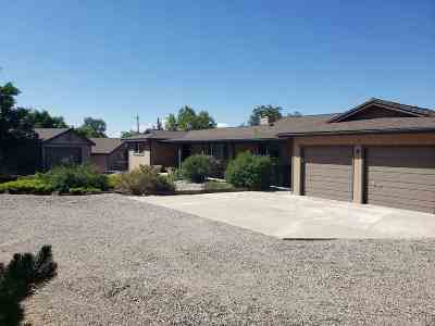 Washoe Valley Single Family Home For Sale: 4030 Woodcock Way