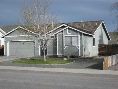 Gardnerville Single Family Home For Sale: 1461 Mary Jo Drive