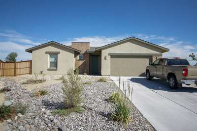 Fernley Single Family Home For Sale: 701 Raptor