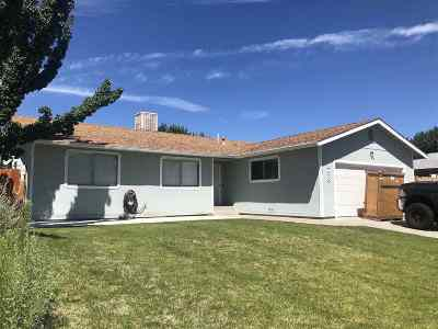 Carson City Single Family Home For Sale: 2238 Marilyns Way