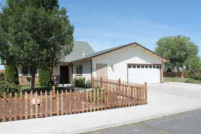 Fernley Single Family Home For Sale: 221 Wildwood Dr