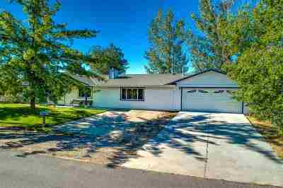 Gardnerville Single Family Home For Sale: 1403 Selkirk Circle