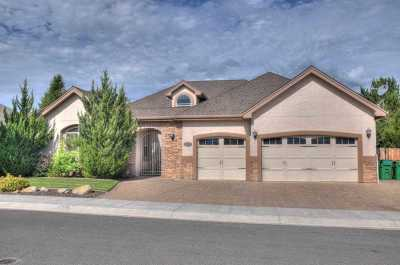 Carson City Single Family Home For Sale: 2970 Silver Stream