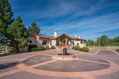 Washoe Valley Single Family Home Auction: 7390 Bryan Canyon