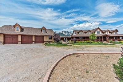Washoe Valley Single Family Home For Sale: 18205 Lake Vista