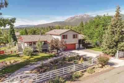 Washoe County Single Family Home For Sale: 5380 Wildwood Drive